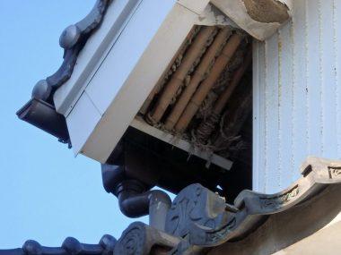210829土橋 漆喰塗籠 軒裏 修理