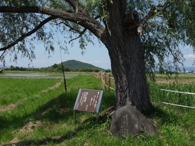 藤原京と耳成山