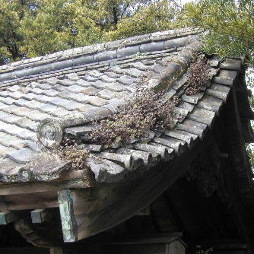 長崎の寺院 歴史的建造物 登録文化財