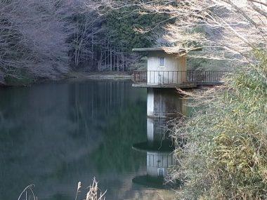 集落丸山 隠れた聖地 貯水池