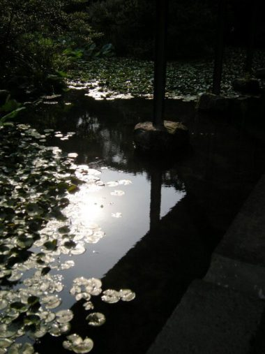 神奈川県立近代美術館 水面と細い独立柱