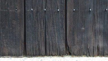 八木O本家杉板