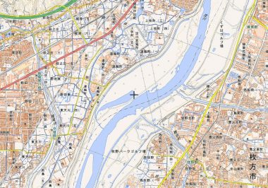 淀川右岸河川敷が鵜殿の葦の群生地