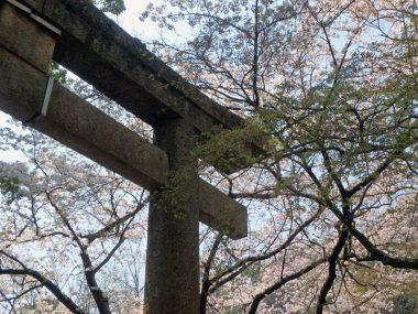 190406神戸市六甲水車新田大土神社の大鳥居(登録文化財)
