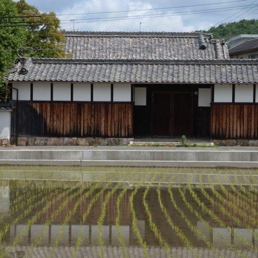 170613水田に浮かぶ庄屋屋敷のイメージ