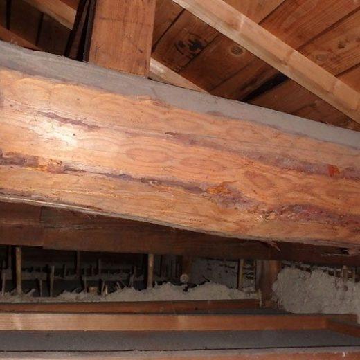 190527在来構法の小屋裏 土壁の家