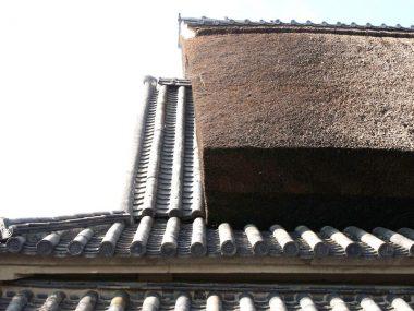 200823八尾市河内木綿の問屋 大和棟の茅葺き民家 登録文化財桃林堂板倉家住宅