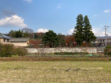 201208東多田夢勝庵南景